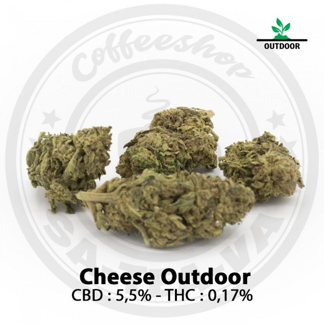 Fleurs CBD CHEESE Outdoor