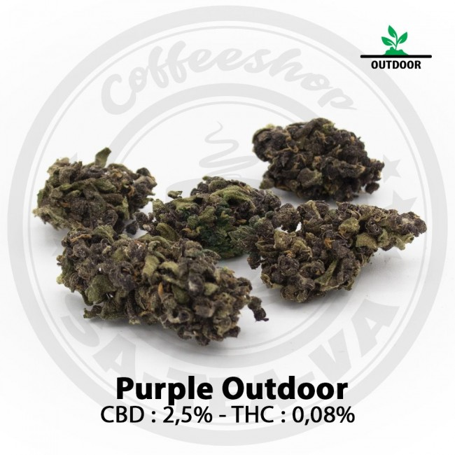 Fleurs CBD PURPLE Outdoor