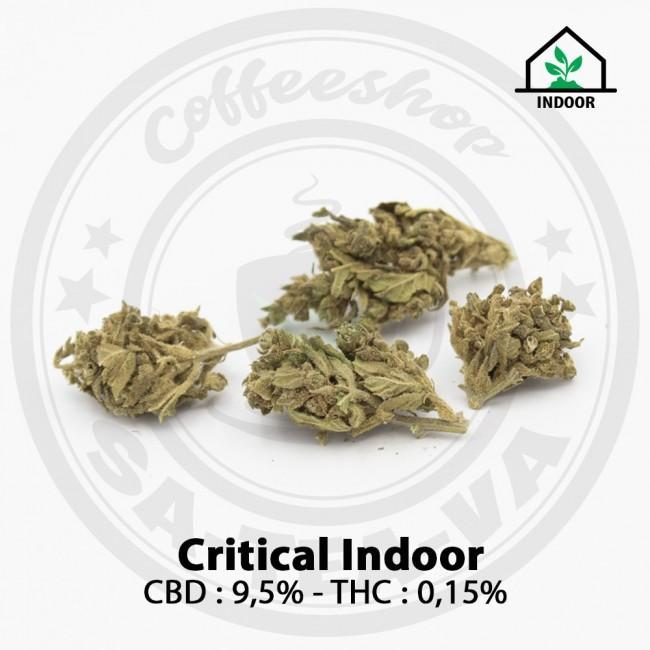 Fleurs CBD CRITICAL Indoor