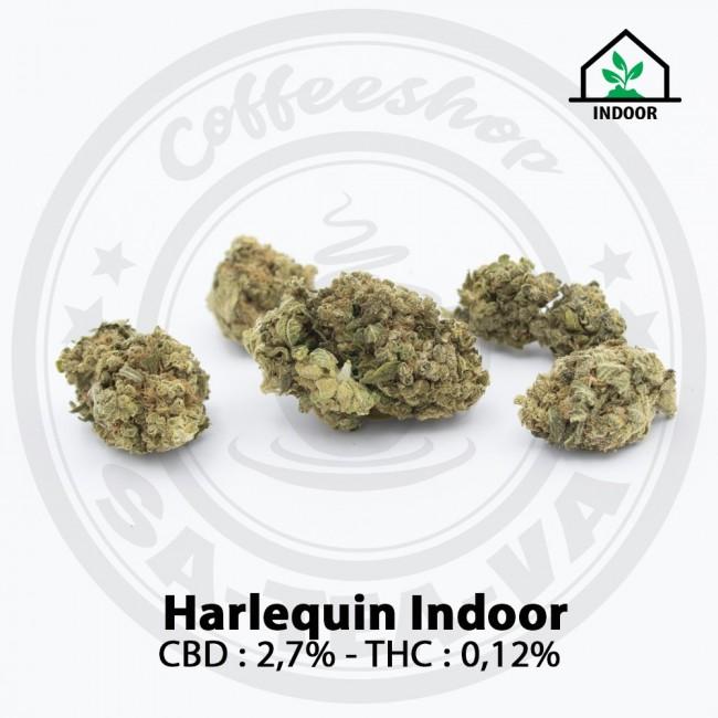 Fleurs CBD HARLEQUIN Indoor