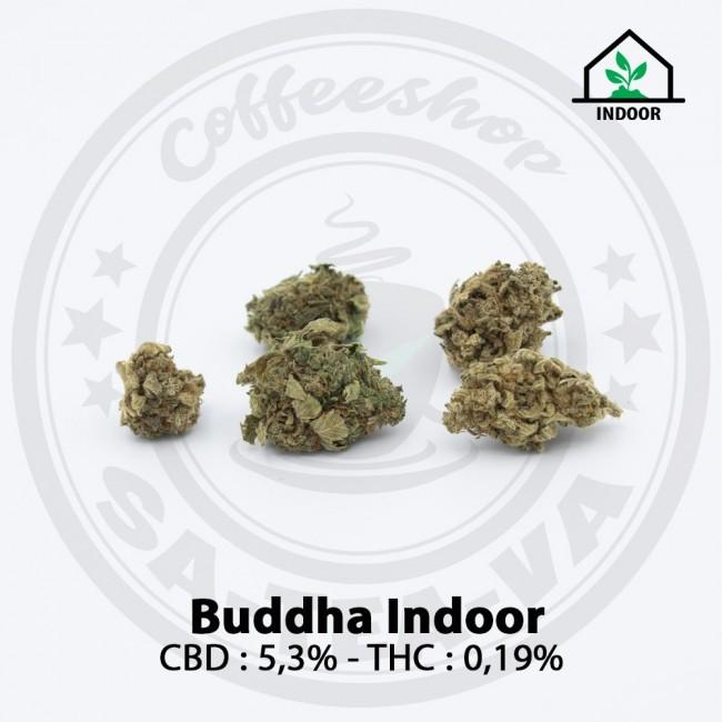 Fleurs CBD BUDDHA Indoor