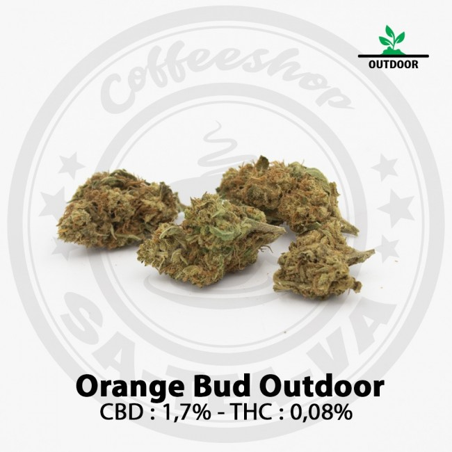 Fleurs CBD ORANGE BUD Outdoor