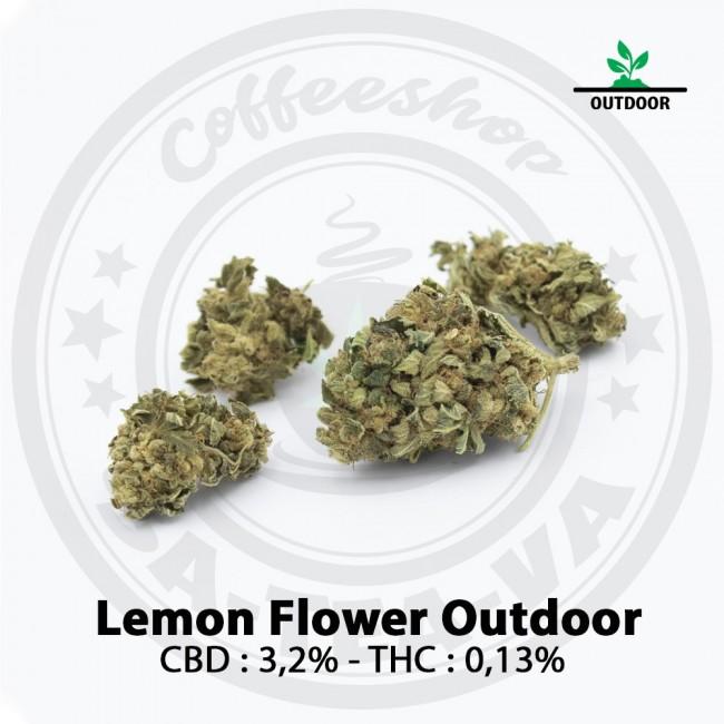 Fleurs CBD LEMON FLOWER...