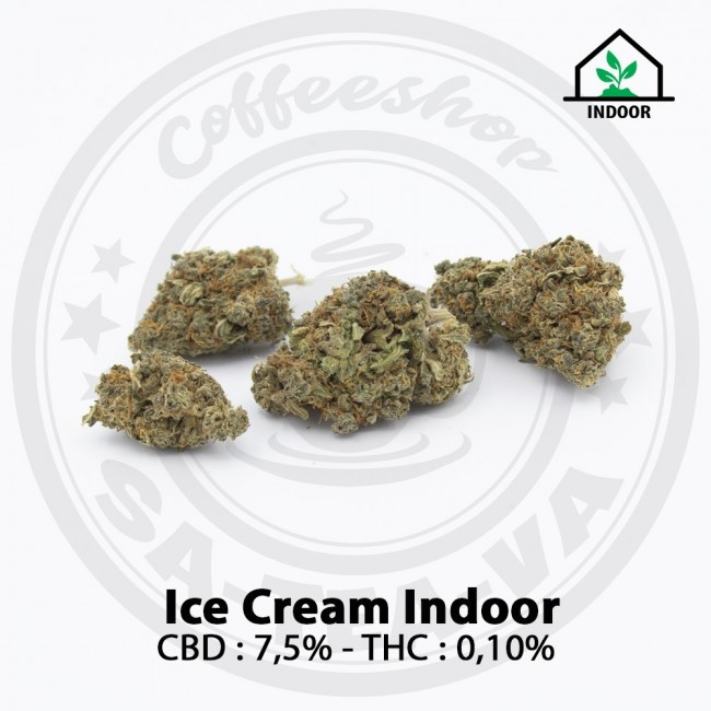 Fleurs CBD ICE CREAM Indoor