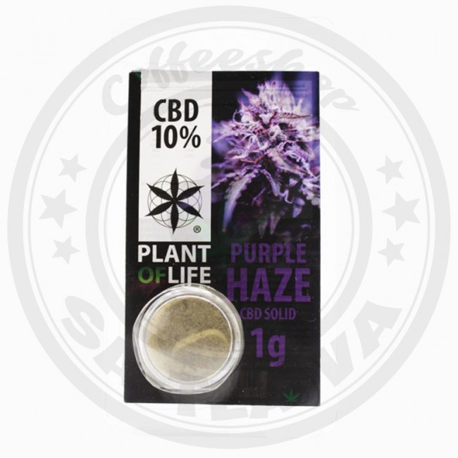 Résine CBD Purple Haze 10% 1G