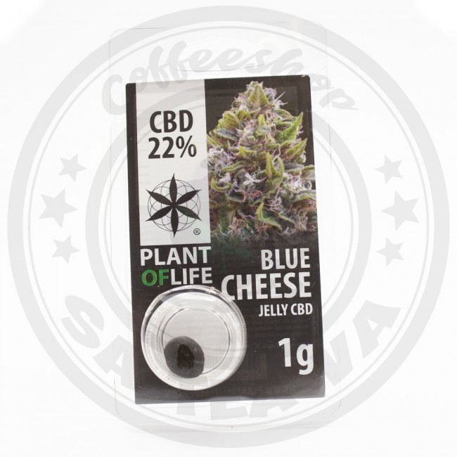 Jelly CBD Blue Cheese 22% 1G