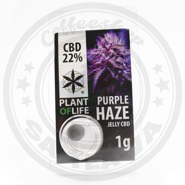 Jelly CBD Purple Haze 22% 1G