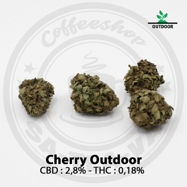 Fleurs CBD CHERRY OUTDOOR