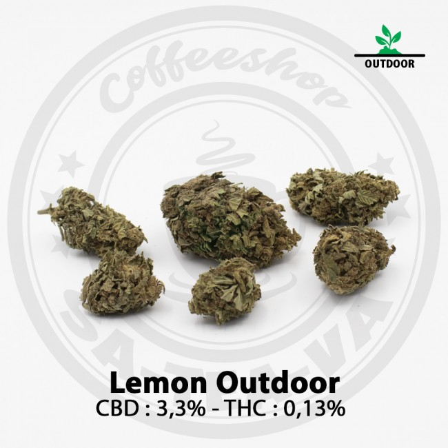 Fleurs CBD LEMON NEW OUTDOOR