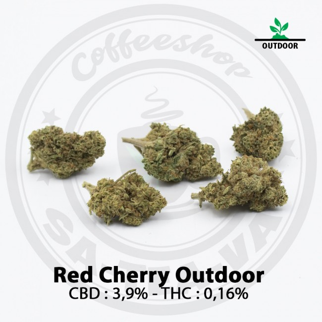Fleurs CBD RED CHERRY Outdoor