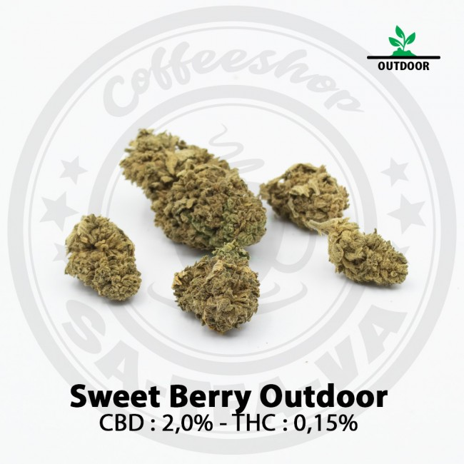 Fleurs CBD SWEET BERRY Outdoor
