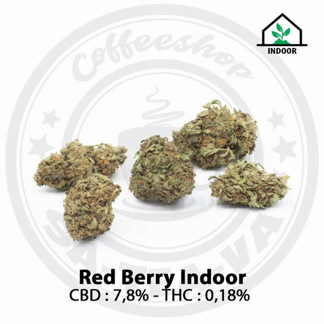 Fleurs CBD Red Berry Indoor