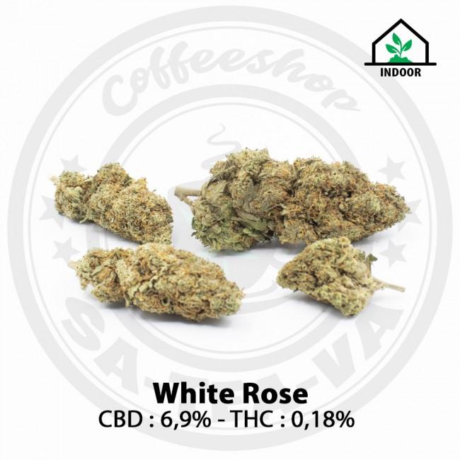 Fleurs CBD White Rose Indoor