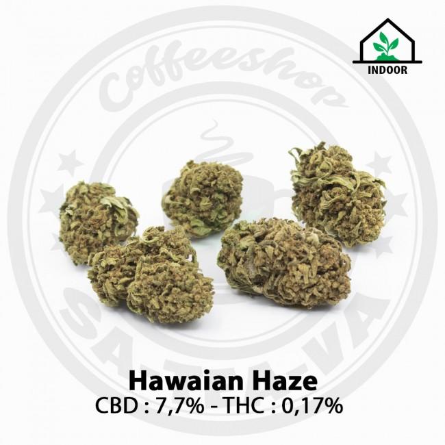 Fleurs CBD Hawaian Haze Indoor