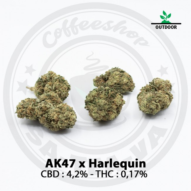 Fleurs CBD AK47 X Harlequin...