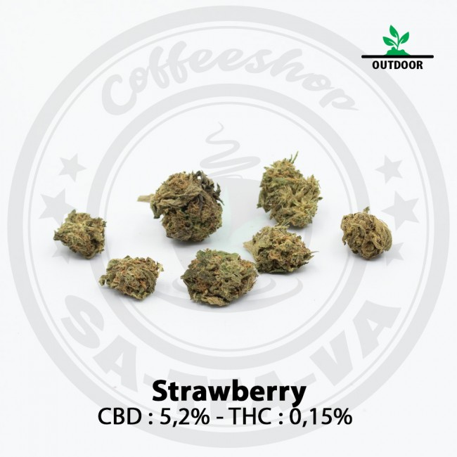 Fleurs CBD STRAWBERRY Outdoor
