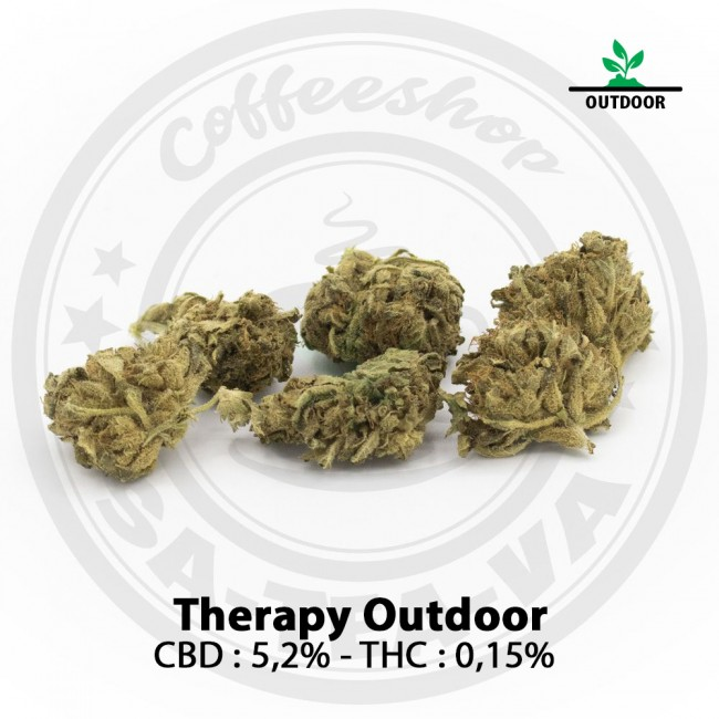 Fleurs CBD THERAPY Outdoor