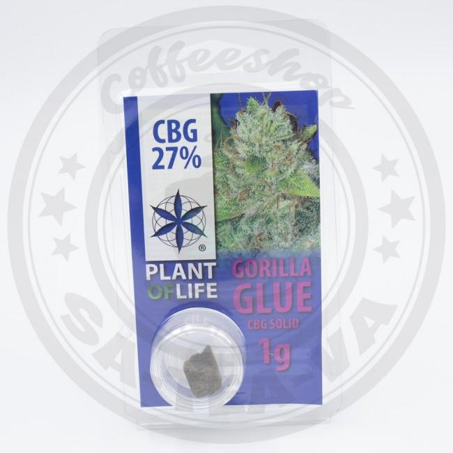 Résine CBG Gorilla Glue 27% 1G