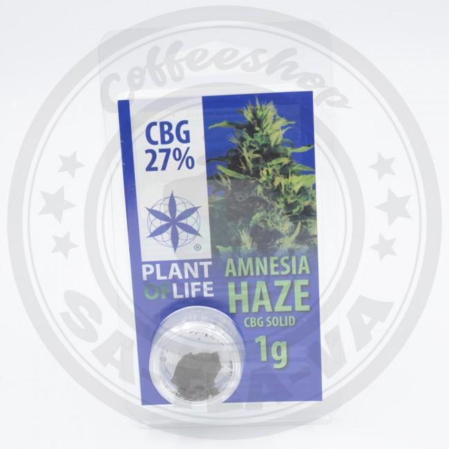 Résine CBG Amnesia Haze 27% 1G