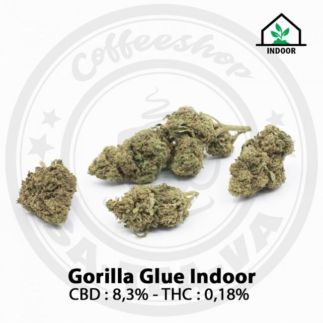Fleurs CBD Gorilla Glue Indoor